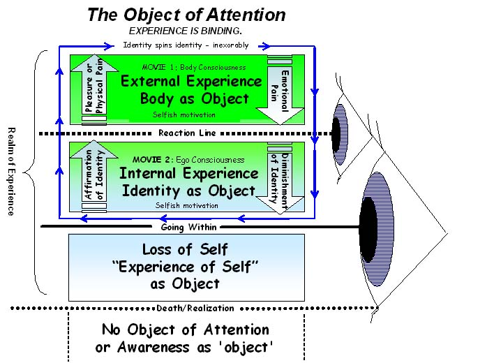 Going Within, The Object of Attention by Bob Cergol