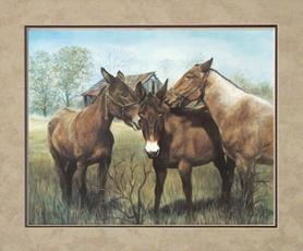 In one ear and in the other: three mules