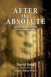 Cover of After the Absolute by David Gold