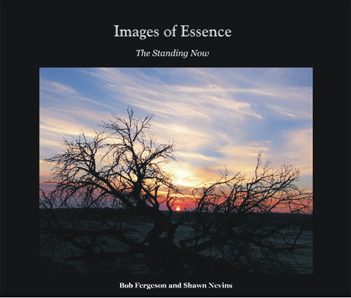 Cover of Images of Essence