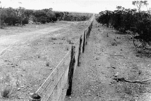 rabbit-proof fence in Western Australia